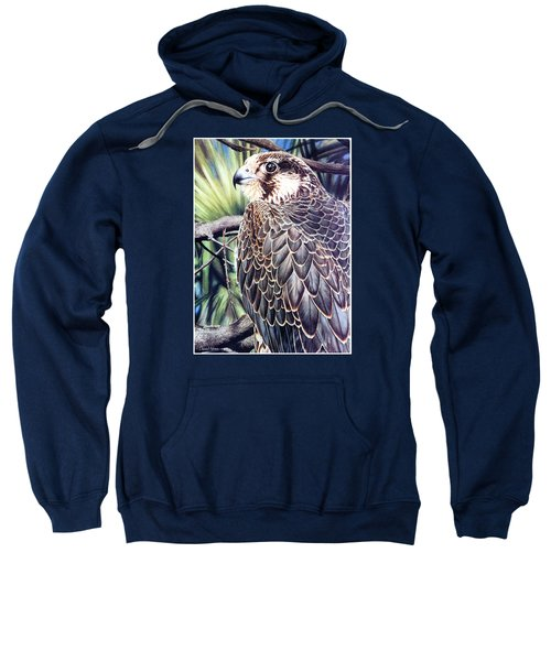 Da138 Peregrine Falcon By Daniel Adams Sweatshirt