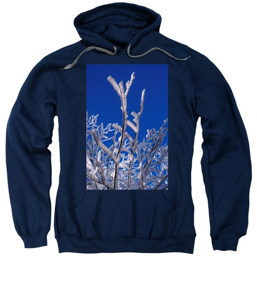Snow And Ice Coated Branches Sweatshirt