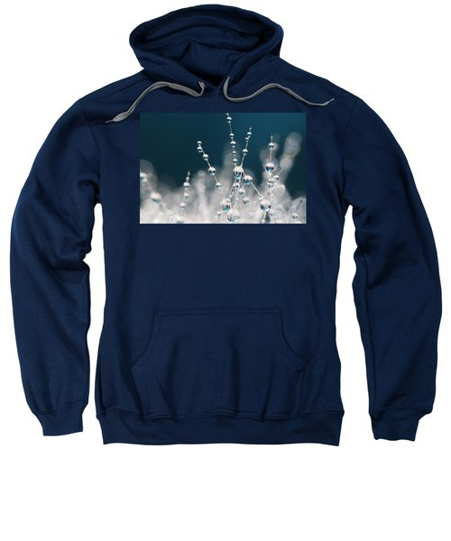 Snow White And Ice Blue Sweatshirt