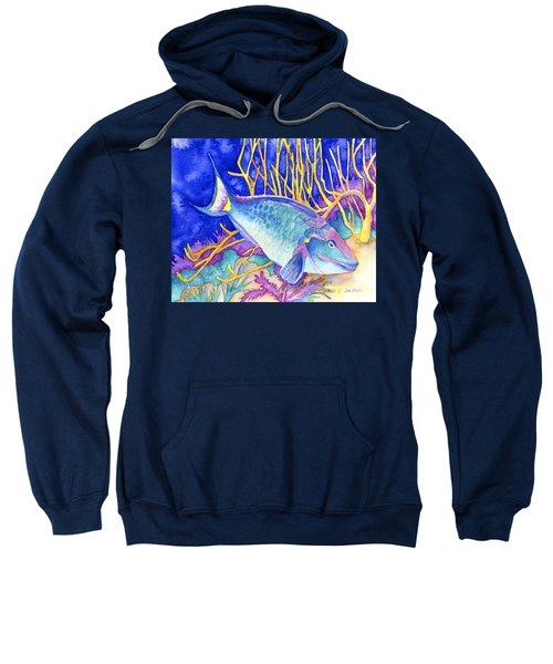 Stoplight Parrotfish Sweatshirt