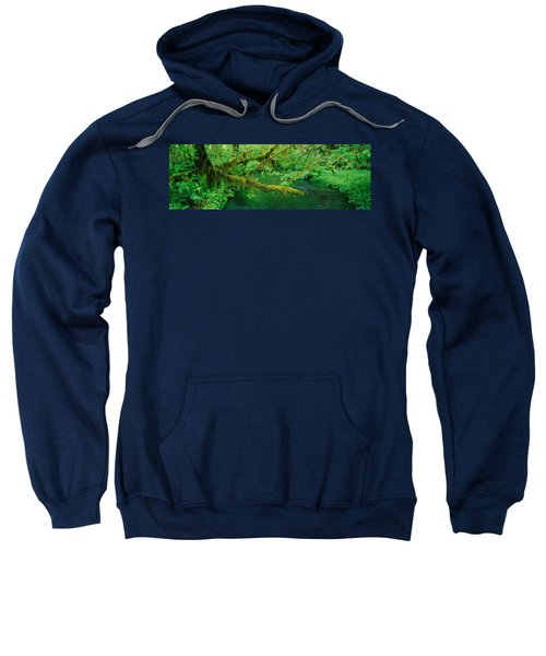 Stream Flowing Through A Rainforest Sweatshirt