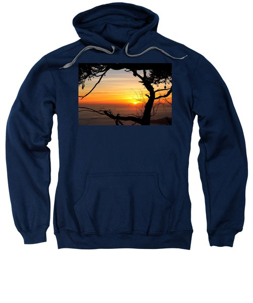 Sunset In A Tree Frame Sweatshirt