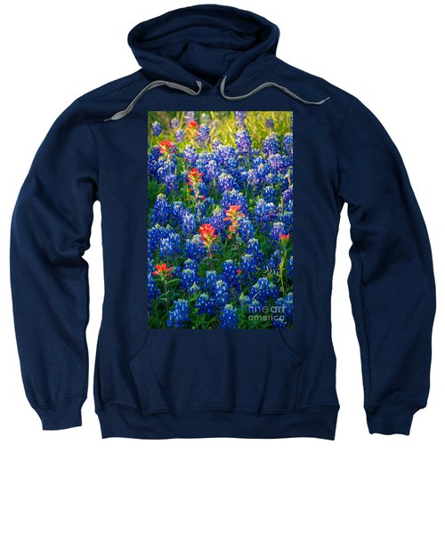Texas Colors Sweatshirt