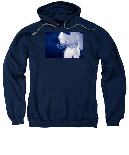The Spring Wind Whisper Sweatshirt
