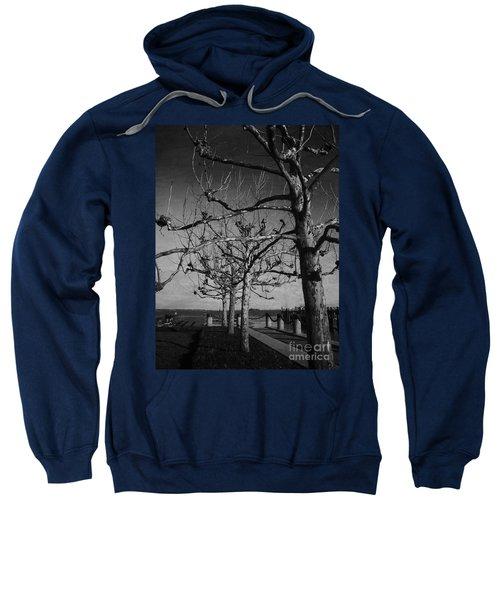 Tree In A Row  Sweatshirt