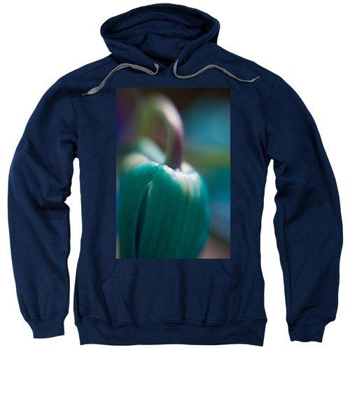 Tulip Bud Sweatshirt