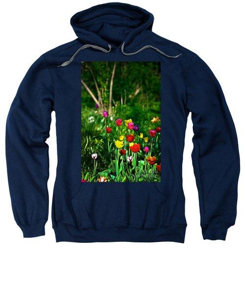 Tulip Rainbow Sweatshirt