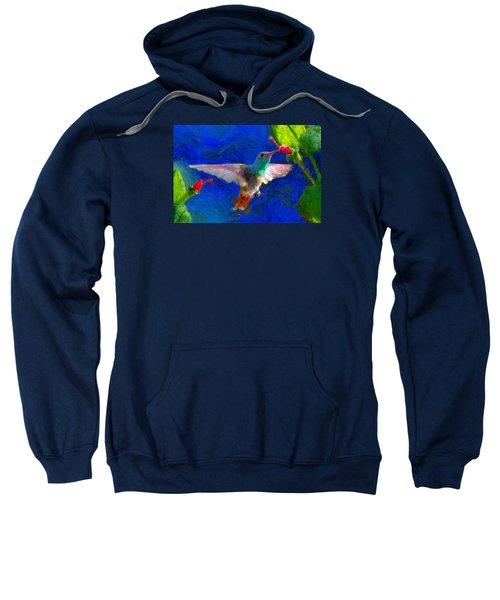 Da052 Turkscap Hummingbird  Sweatshirt