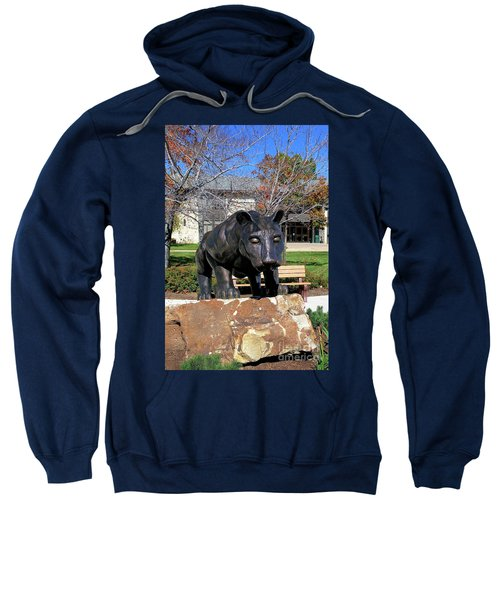 Upj Panther Sweatshirt