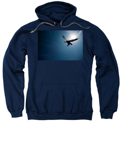 Vulture Flying In Front Of The Sun Sweatshirt by Johan Swanepoel
