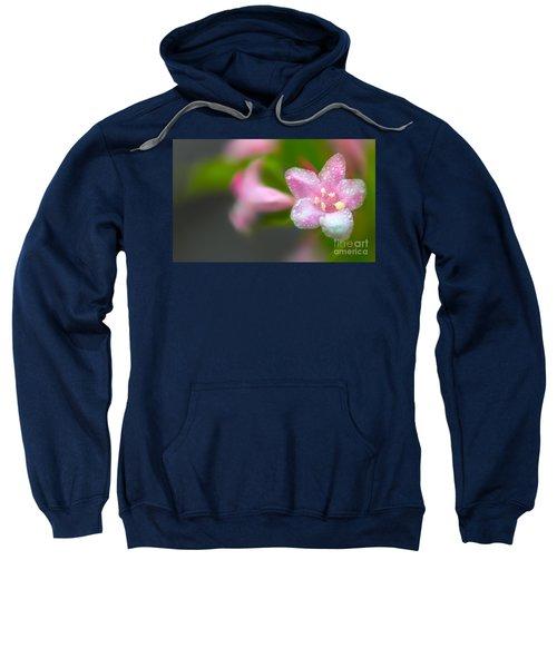 Weigela In Spring Sweatshirt