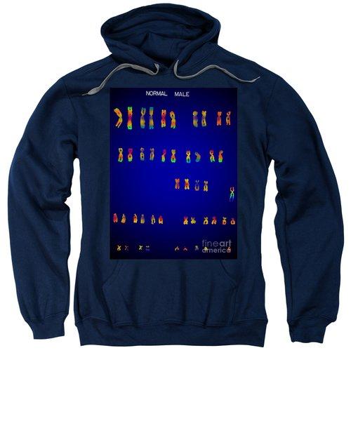 Male Karyotype Sweatshirt