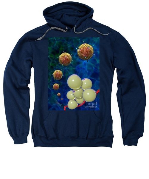 Adenovirus 36 And Fat Cells Sweatshirt
