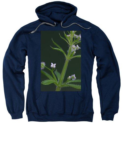 Cleavers Sweatshirt