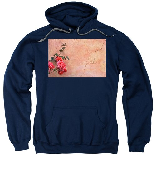 Cracked Wall And Rose Sweatshirt