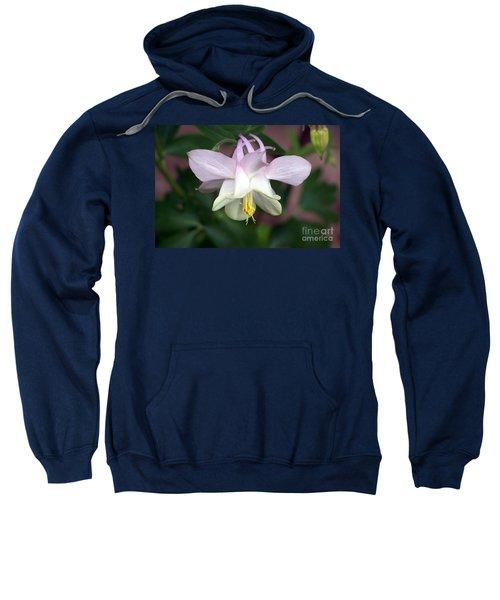 Pink Perfection Sweatshirt