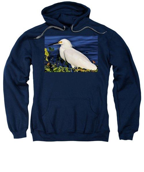 Profile Of A Snowy Egret Sweatshirt
