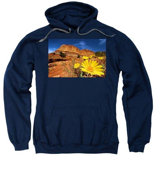 Rainbow Garden Sweatshirt