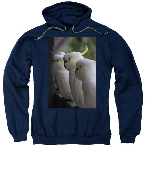 The Line-up Sweatshirt by Douglas Barnard