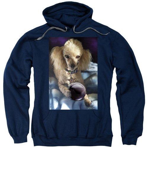 The Wizard Of Dogs Sweatshirt