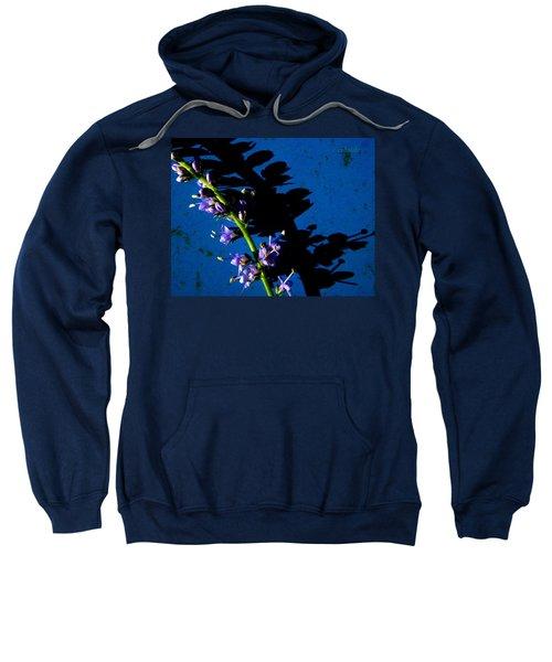 Veronica's Shadow Sweatshirt