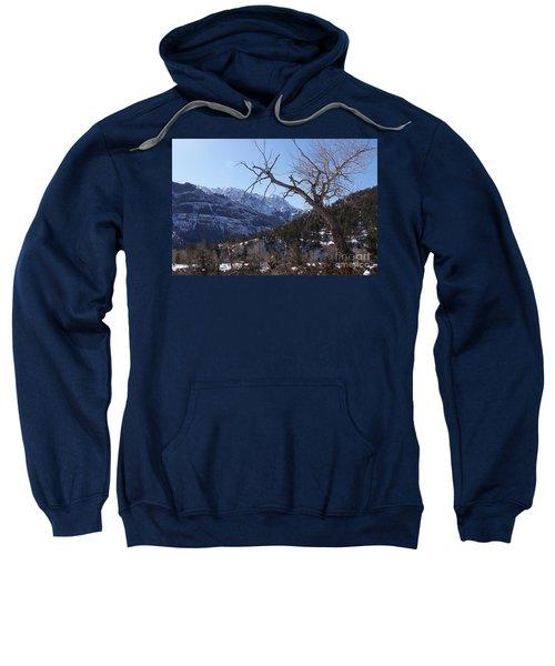 Where Dreams Begin Sweatshirt