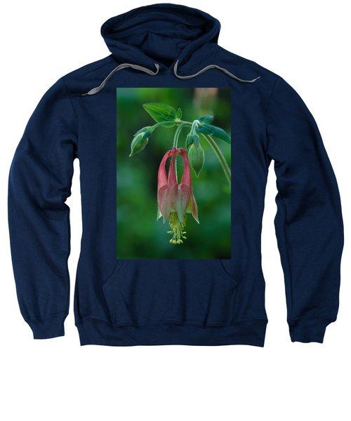 Wild Columbine Flower Sweatshirt