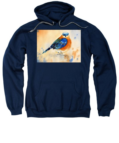 Bluebird #3 Sweatshirt