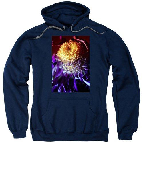 Dying Purple Chrysanthemum Flower Background Sweatshirt