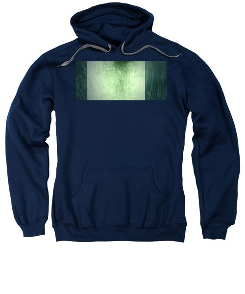 Surface Sweatshirt