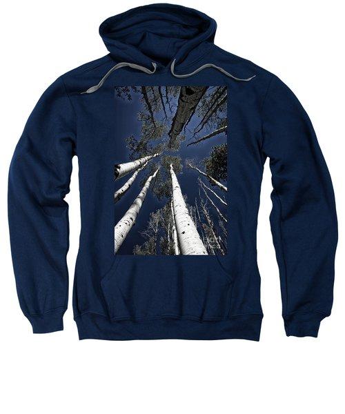 Towering Aspens Sweatshirt