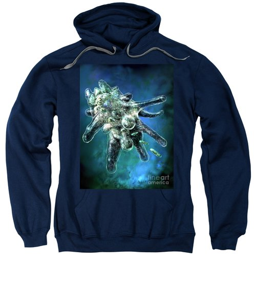 Amoeba Blue Sweatshirt