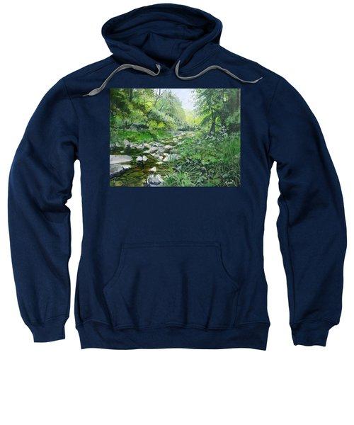 Another Look Sweatshirt
