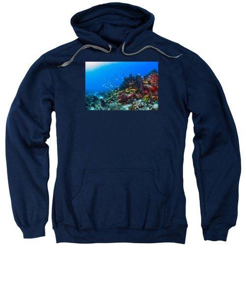 Art By Nature Sweatshirt