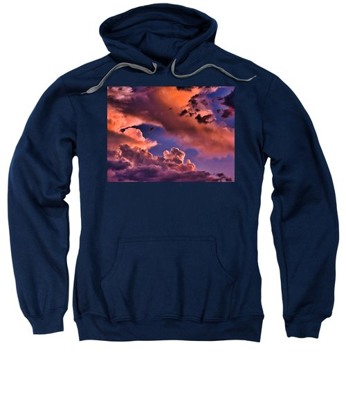 Baby Dragon's Fledgling Flight Sweatshirt