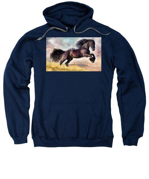Black Beauty Sweatshirt