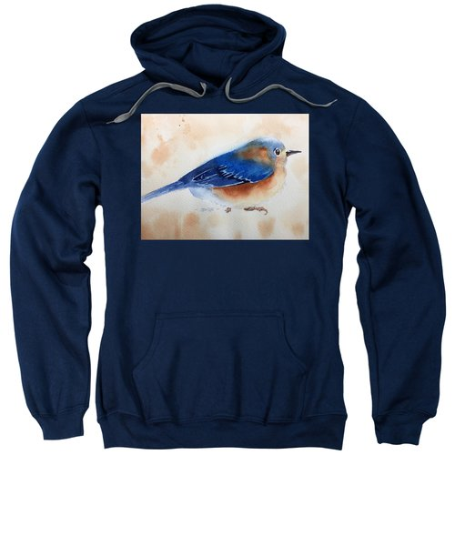 Bluebird #5 Sweatshirt