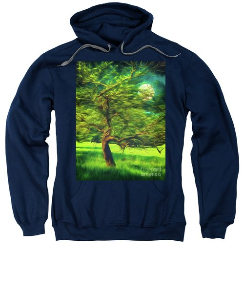 Bowing To The Moon Sweatshirt