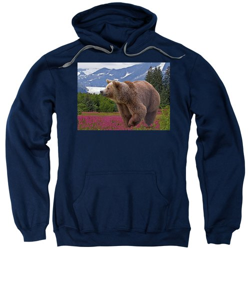 Brown Bear 2 Sweatshirt
