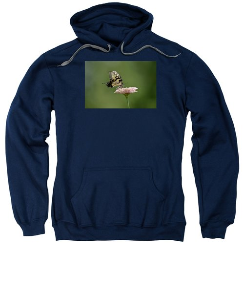 Butterfly On Zinnia Sweatshirt