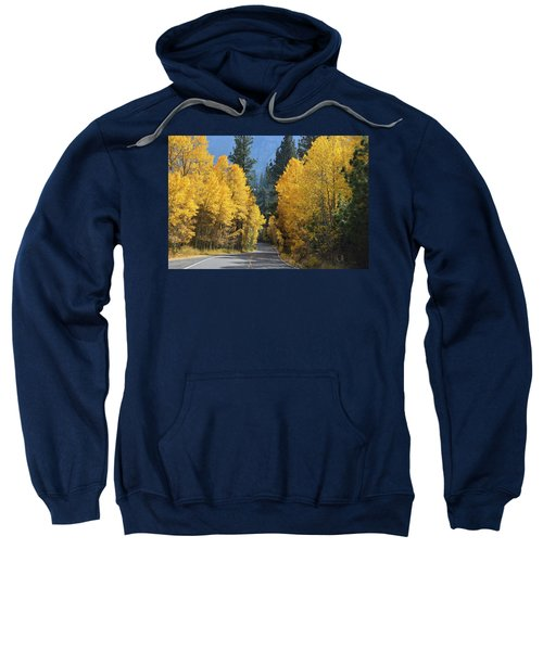 California Gold Sweatshirt