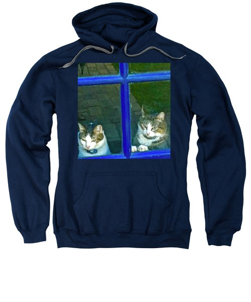 Cats On Baylor Street Sweatshirt