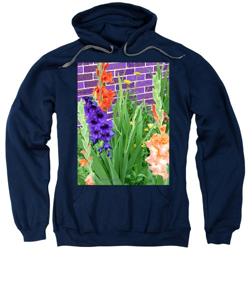 Colorful Gladiolas Sweatshirt