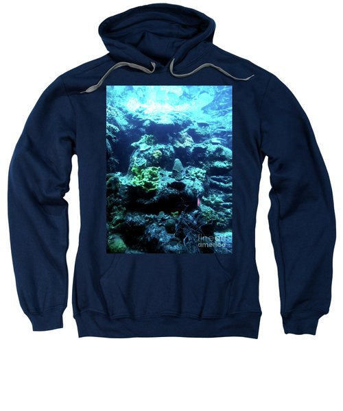 Sweatshirt featuring the photograph Coral Art 4 by Francesca Mackenney