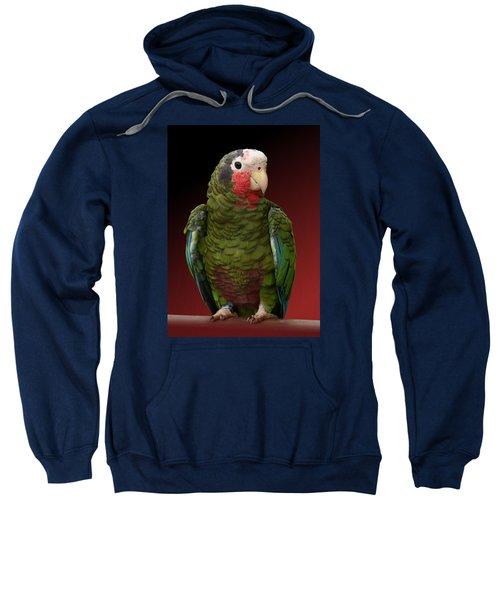 Cuban Amazon Parrot Sweatshirt