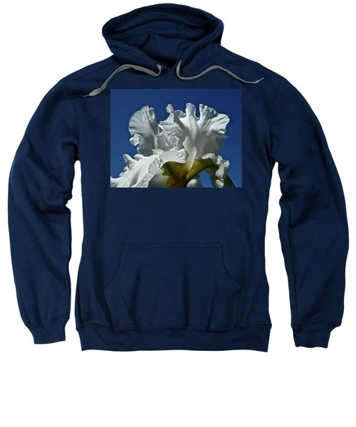 Did Not Evolve Sweatshirt