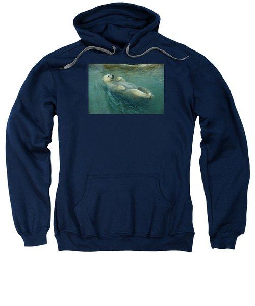 Doing Tricks 1 Sweatshirt