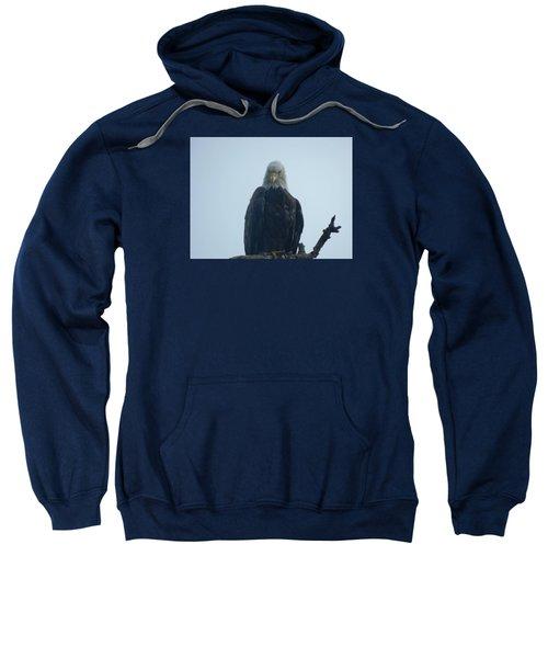 Elegant Eagle Sweatshirt