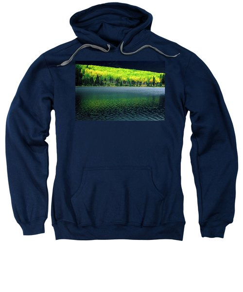 Fall Out Sweatshirt