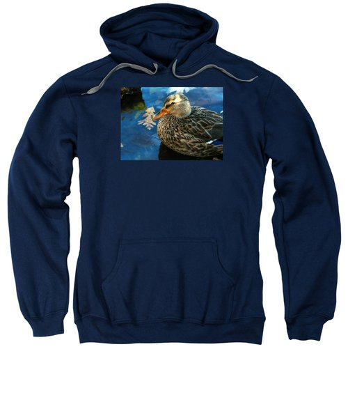 Female Mallard Duck In The Fox River Sweatshirt